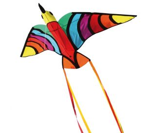 Single line kite HQ Tropical Bird