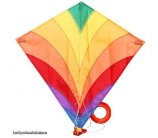 Single line kite HQ EDDY Rainbow