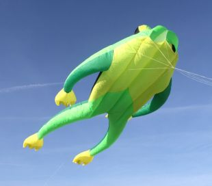 One line Kite Fritz the Frog