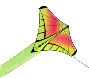 Single line Kite Prism Mantis